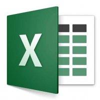 Microsoft Excel® 2019